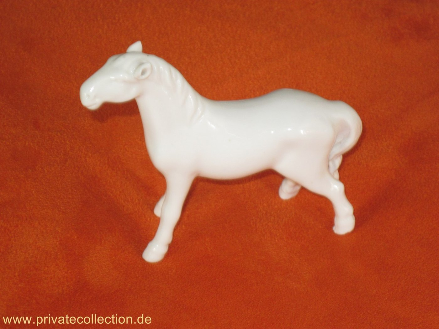 Elegant white Swatow China Horse White in Colour