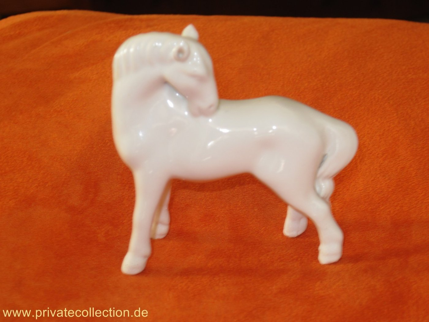 Elegant white Swatow China Horse White in Colour 5